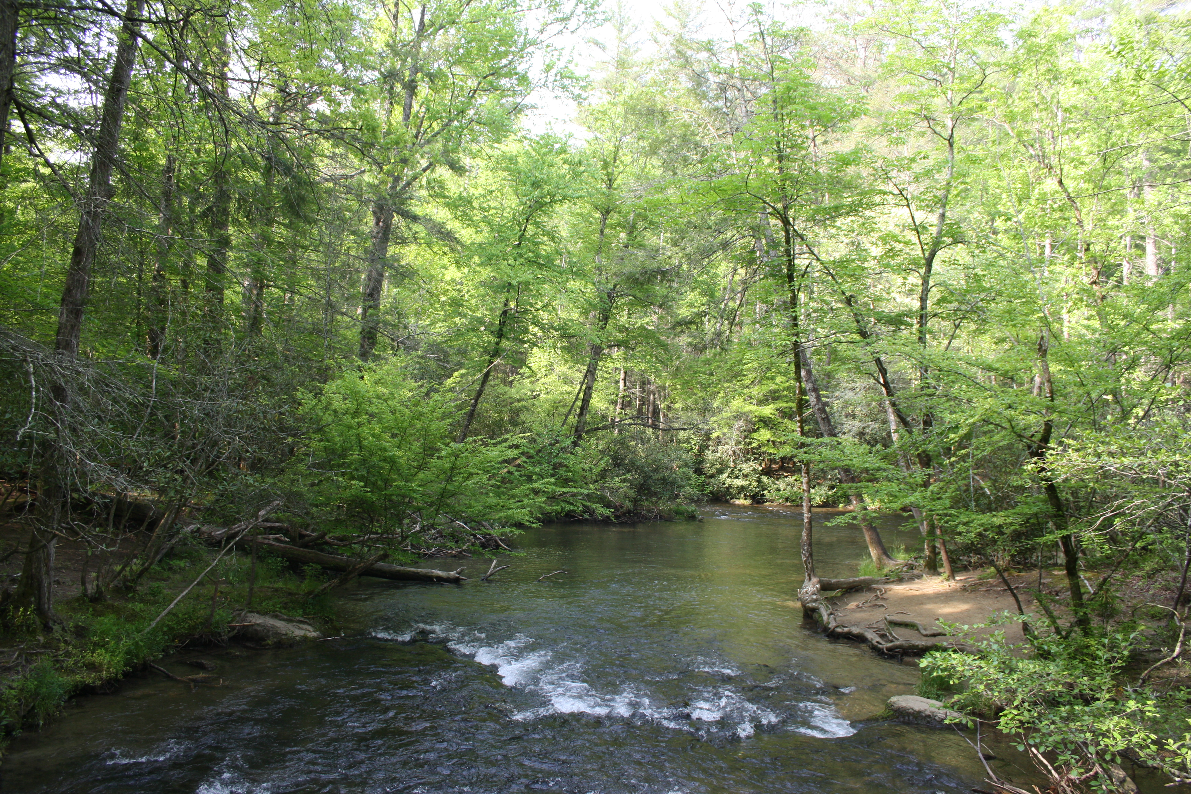 Landschaft North Carolina